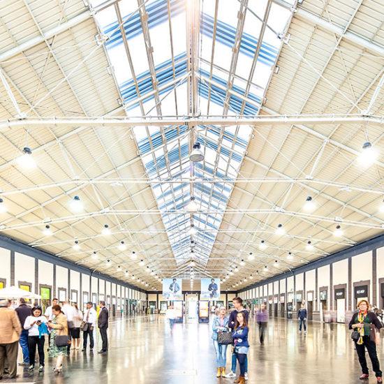 Estación de Alta Velocidad de Alicante. Arquitectos Alicante. eneseis Arquitectura